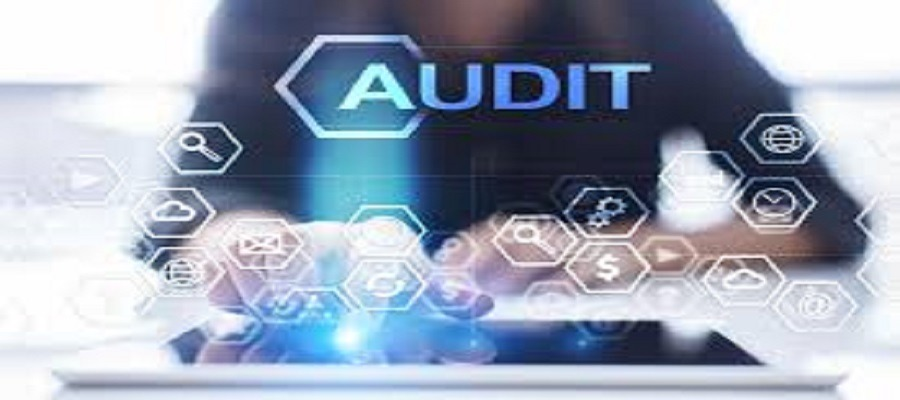 What Exactly Is Field Audit Software in Pakistan … And How Can It Help You