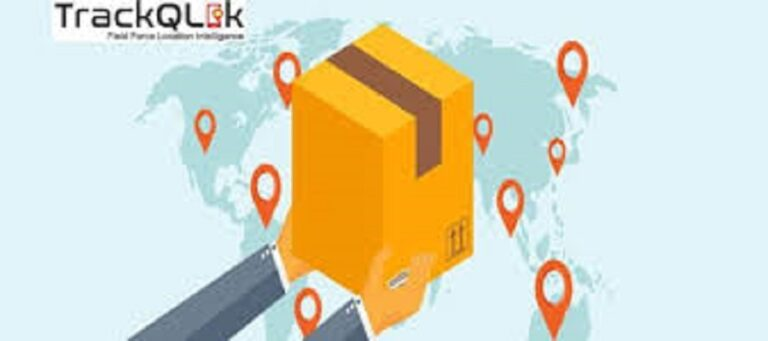 Why Courier Delivery Companies Use Delivery Software in Pakistan
